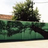 Τα graffiti «ζωντανεύουν» το Αθλητικό Κέντρο Σοφάδων