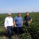 Πληγείσες καλλιέργειες στο Δήμο Σοφάδων επισκέφτηκε ο Επόπτης του ΕΛΓΑ