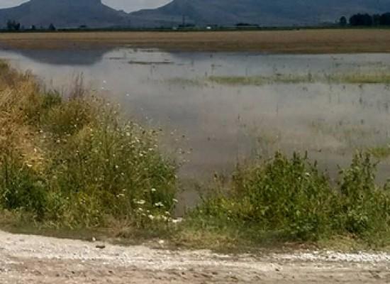 Να καθαριστούν άμεσα οι κοίτες των ποταμών από τον ΓΟΕΒ Θεσσαλίας